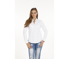 Shirts PONTTO